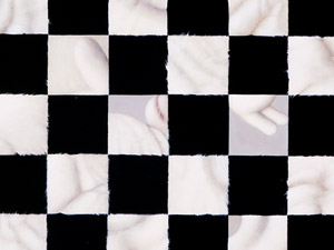 Fur Checkerboard